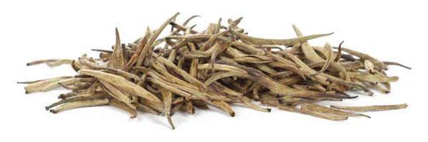 Buy Golden Tips White Tea