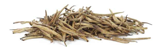Buy Golden Tips White Tea