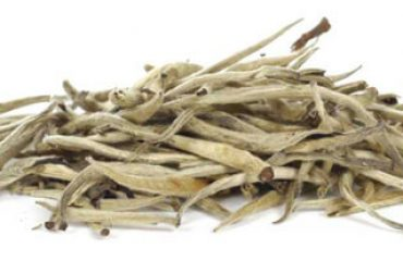 Buy Silver Needle White Tea