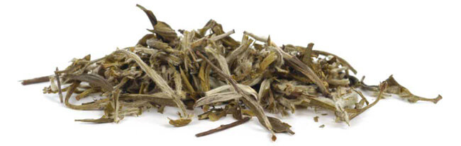 Buy White Peony Tea - Pai Mu Tan Organic